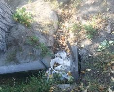 В арыке валяется мусор