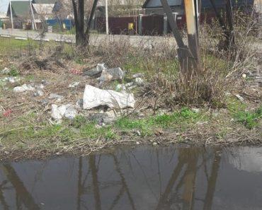 Сбрасывают мусор  под электроопору